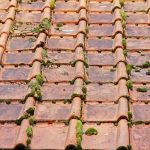 Do UK insurance companies cover roofing repairs?